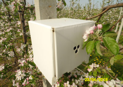 Bienenstock Mini